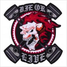 20pcs Harley Davidson Skull Motorcycle Badge Appliques